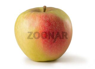 Apfel Elstar freigestellt