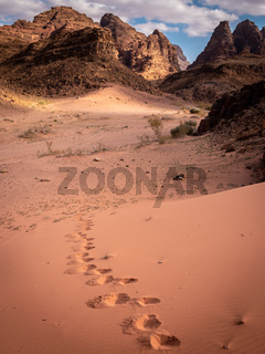 Footsteps walking alone in Wadi Rum desert, Jordan