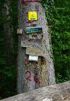 Wanderwege Hinweistafel im Schwarzwald bei Glatt