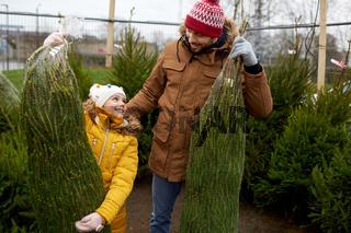 happy family buying christmas tree at market