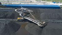 Coal loading and sorting equipment preparing the coal