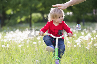 Little baby on a bicycle on a green meadow. Two year old boy on a tricycle. Kid playing on the field with dandelions