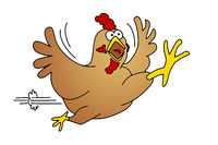 running chicken comic art graphic isolated on white background