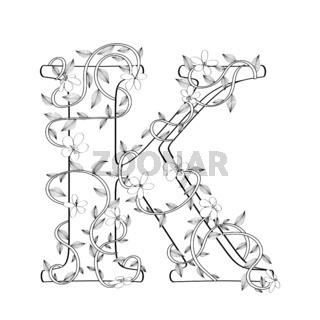 Letter K floral sketch