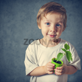 Portrait of funny little boy with window plants