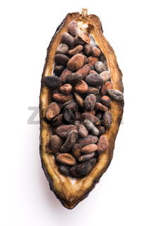 Cocoa (cacao) beans on a beanpod with focus on foreground.