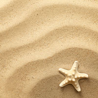 Starfish On Wavy Sand Background