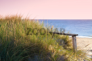 bench on the coastline
