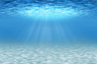 Ocean underwater scene with sandy seabed.
