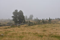Windebensee