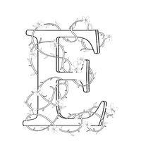Letter E floral sketch
