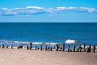 Buhnen an der Küste der Ostsee in Kühlungsborn