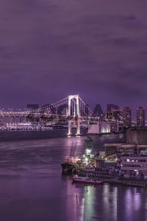 Purple night on illuminated Rainbow Bridge with cruise ships moored in Odaiba Bay of