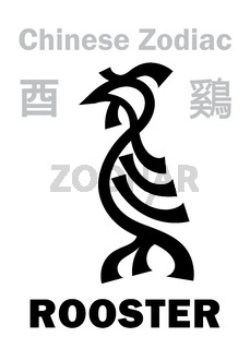 Astrology: ROOSTER / CHICKEN (sign of Chinese Zodiac)