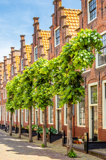 Traditional Duch stepped gable houses in Haarlem in the Netherlands