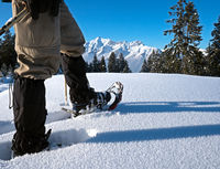 Schneeschuhe vor alpiner Landschaft