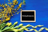 Spring Flowers, Branch, Blackboard, Fruehjahrsputz Means Spring Cleaning