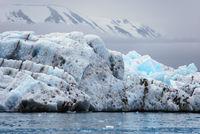 Eisberge, Liefdefjord, Spitzbergen, Norwegen
