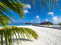 Maldives island with beach water bungalows and palm trees, South Male Atoll, Maldives