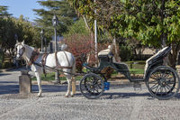 Pferdekutsche in Ronda