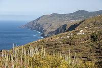 Landschaft auf La Palma, Kanarische Inseln, Spanien