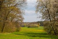 Landschaftspark Degenershausen
