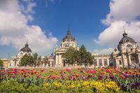 Budapest Hungary, city skyline at Szechenyi Thermal Bath
