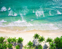 Aerial view beach with coconat palm trees and beautiful blue sea