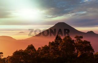 Java landscapes