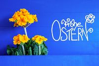 Yellow Spring Flowers, Calligraphy Frohe Ostern Means Happy Easter