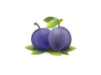 very beautiful prunes on white background - 3d rendering