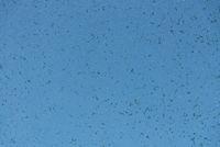 blauer Hintergrund bei kaputter Glasscheibe - Muster für Textfreiraum