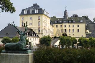 Hirsch, Schloss Wittgenstein, Bad Laasphe, NRW,