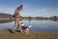 Beagle am Eichsee