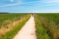 Radwanderweg zwischen Ahrenshop und Born am Darss, Fischland-Darss, Mecklenburg-Vorpommern, 2020