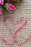 Red heart ribbon and pink tulips isolated on brown cloth background.