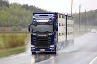 Blue Next Generation Scania S650 Livestock Transport in Rain