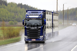 Blue Next Generation Scania S650 Livestock Transport in Rain
