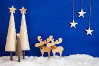 Christmas Tree, Moose, Snow, Star, Copy Space