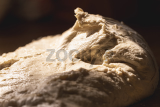 Dough close-up. Homemade sourdough with no yeast