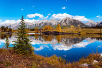 Autumn forest is reflected in the lake