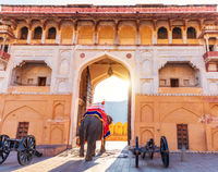 Arch of the Amber Fort and an elepant, Jaipur, India