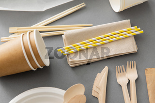 disposable dishes of paper and wood