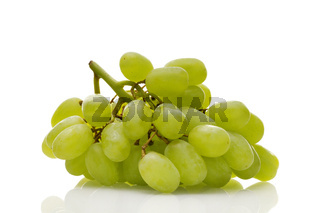 Ripe white wine grapes with stalk isolated on white background. Healthy food, grocery, vegan lifestyle and organic fair trade concept.