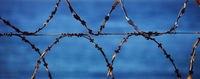 Panoramic view on sunlit old rusted barbed wires
