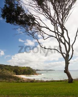 Beach just north of Coffs Harbour Australia