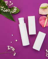 Makeup cosmetic products