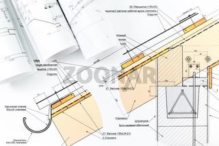 Architecture blueprint detail