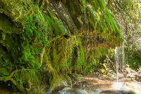 Wasserfall am Fluss Siagne bei Saint-Cezaire-sur-Siagne