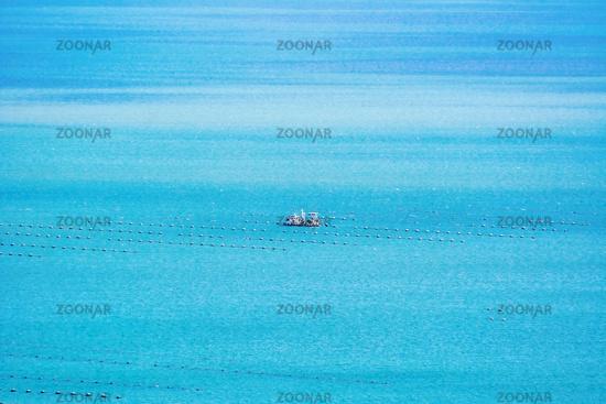 Fishing in the Black sea